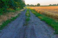 Дорога поля в утре Стоковые Фотографии RF
