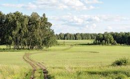 Дорога поля между настраивая колышками Стоковое Изображение RF