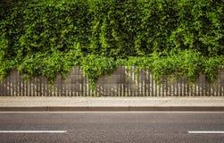 дорога предпосылки пустая стоковое изображение rf