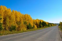 Дорога пригорода в осени Стоковые Фото