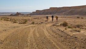 Дорога пустыни Backpackers идя Стоковое фото RF
