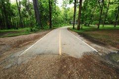 дорога пущи конца Стоковые Изображения RF