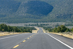 Дорога пущи около грандиозного каньона Стоковые Изображения