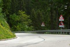 Дорога пущи Стоковое Изображение