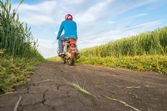 Дорога, пшеничное поле и облака ландшафта лета Мотоцикл Стоковое фото RF