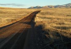 дорога равнин грязи травянистая Стоковое Фото