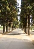 дорога римская Стоковое Изображение