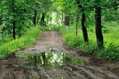 дорога сельская стоковое изображение