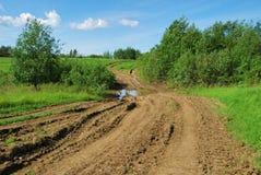 дорога сельская Стоковые Фото