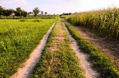 Дорога сельской местности пакостная Стоковые Изображения