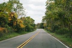 Дорога сельской местности с листвой осени Стоковое Фото
