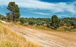 дорога сельской местности Стоковая Фотография