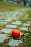 дорога сердца Стоковые Фото