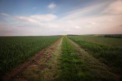 Дорога сельской местности на заходе солнца Стоковая Фотография