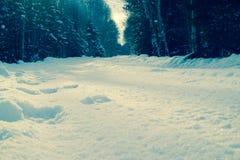 Дорога снега солнечная Стоковое Изображение