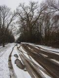 Дорога снега стоковое изображение