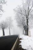дорога снежная Стоковые Изображения RF