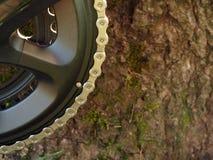 Дорога спорта велосипеда Стоковое фото RF