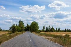 Дорога страны пасмурная Стоковые Фото