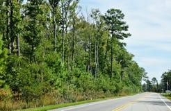 Дорога США Ист-Сайд положения Вирджинии местная Стоковые Фото