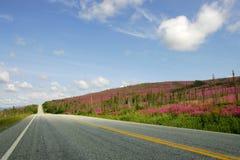 дорога США Стоковое Изображение