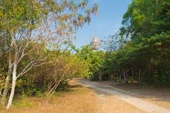Дорога с бамбуковым фонариком, Вьетнамом стоковая фотография