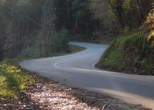 Дорога с кривой в s стоковое фото rf