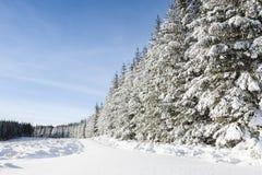 Дорога с снегом на Strathdon в Шотландии Стоковое фото RF