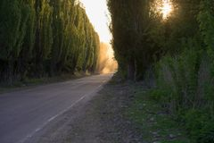 Дорога тиха Дым перспектива стоковое фото rf