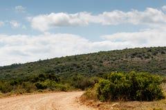 Дорога то водит к Стоковое Изображение