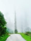дорога тумана узкая Стоковая Фотография RF