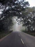 дорога тумана стоковые изображения rf