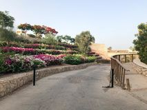 Дорога украшена с красивым покрашенным многоуровневым садом с сериями ярких пестротканых цветя цветков, flowerbeds l стоковое фото rf