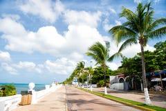 Дорога улицы с портовым районом около зеленых пальм, Cozumel, Мексикой Стоковое Фото