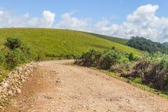 Дорога фермы с заводами Стоковые Изображения RF