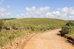 Дорога фермы с заводами Стоковое фото RF