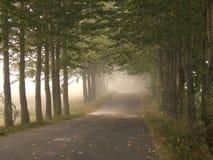 дорога фермы Стоковые Изображения RF