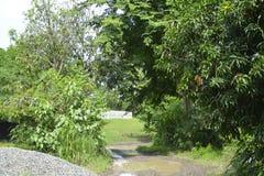Дорога фидера ведущее внешнее PENRO-LGU стоковое фото