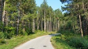 Дорога Хорватии Udbina старая Стоковая Фотография RF