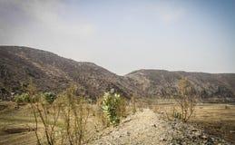 Дорога холма в долине Стоковые Изображения RF