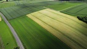 Дорога через аграрные поля - отслеживать съемку, взгляд высокого угла сток-видео