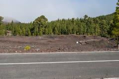 Дорога через вулканический ландшафт Стоковая Фотография