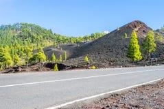Дорога через вулканический ландшафт Стоковые Фото