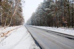 Дорога через древесины в зиме Стоковое Изображение RF