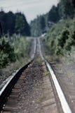 дорога через лес - железная дорога потеряна в помохе Стоковое Фото
