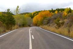 Дорога через лес через ландшафт осени стоковые фото