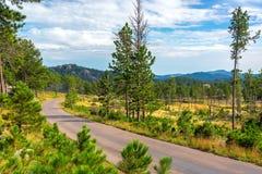 Дорога через парк штата Custer стоковое изображение rf