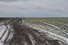 Дорога через поля зимы Стоковое Изображение