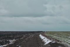 Дорога через поля зимы Стоковые Изображения