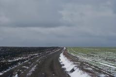 Дорога через поля зимы Стоковое фото RF